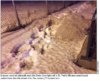 Snow-covered sidewalks are impeding accessibility